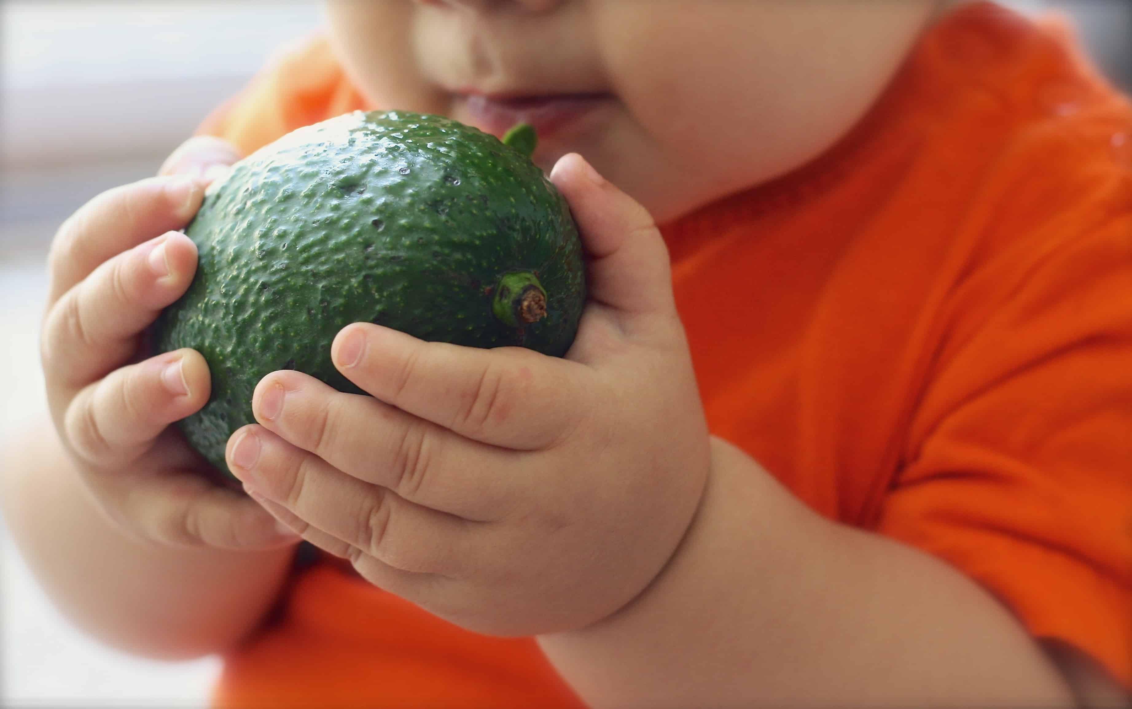 Resultado de imagen para niño comiendo aguacate